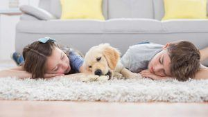 Children and Dog Laying on Area Rug with Hardwood Flooring