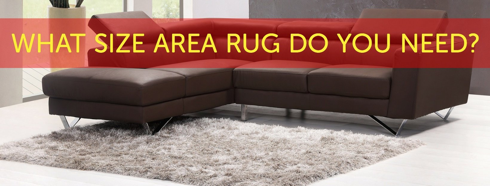 What Size Rug Does Your Room Need?