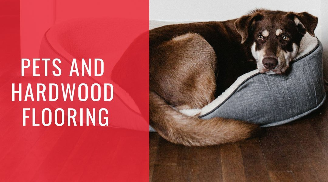 Pets and Hardwood Flooring