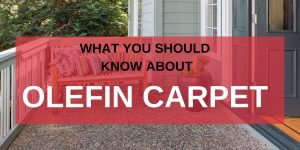 What You Should Know About Olefin Carpet