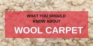 What You Should Know About Wool Carpet